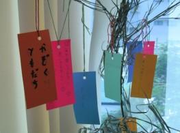 [HN]-Lễ hội văn hóa Nhật Bản Tanabata tại Jellyfish Education