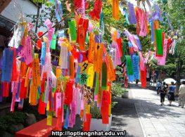 Lễ hội đẹp & Lãng mạn nhất Nhật Bản