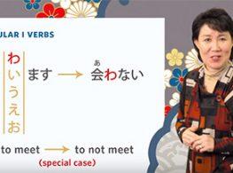 Học tiếng Nhật qua video chủ đề Nai-form